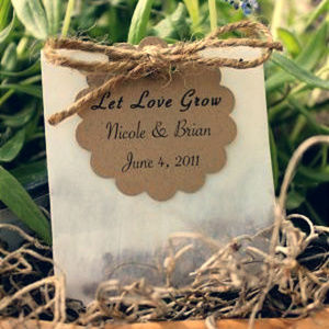 Other - Mini Glassine Envelopes for Wedding Favors/Seeds
